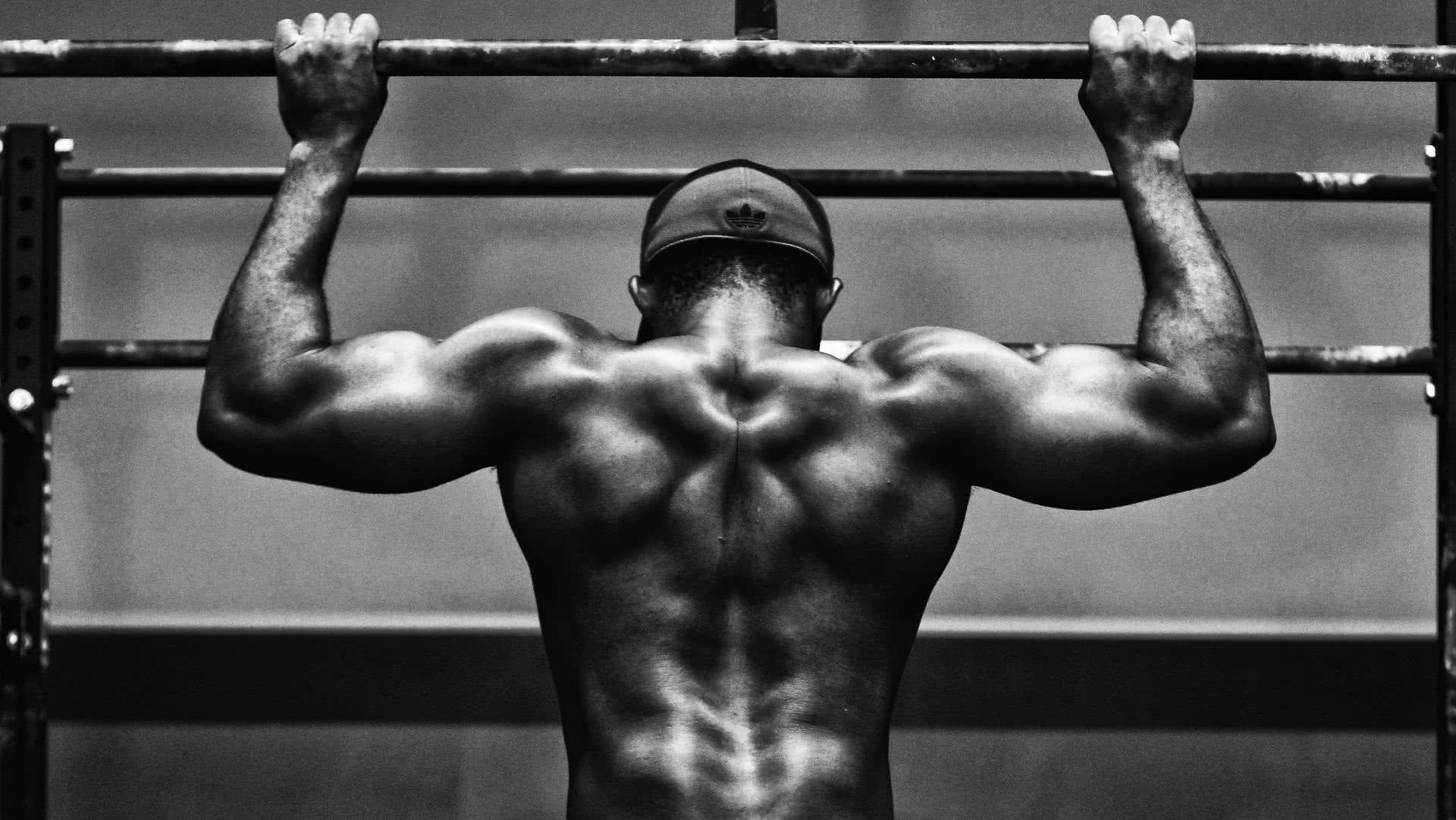 les régimes pour perdre la graisse et construire la masse musculaire maigre
