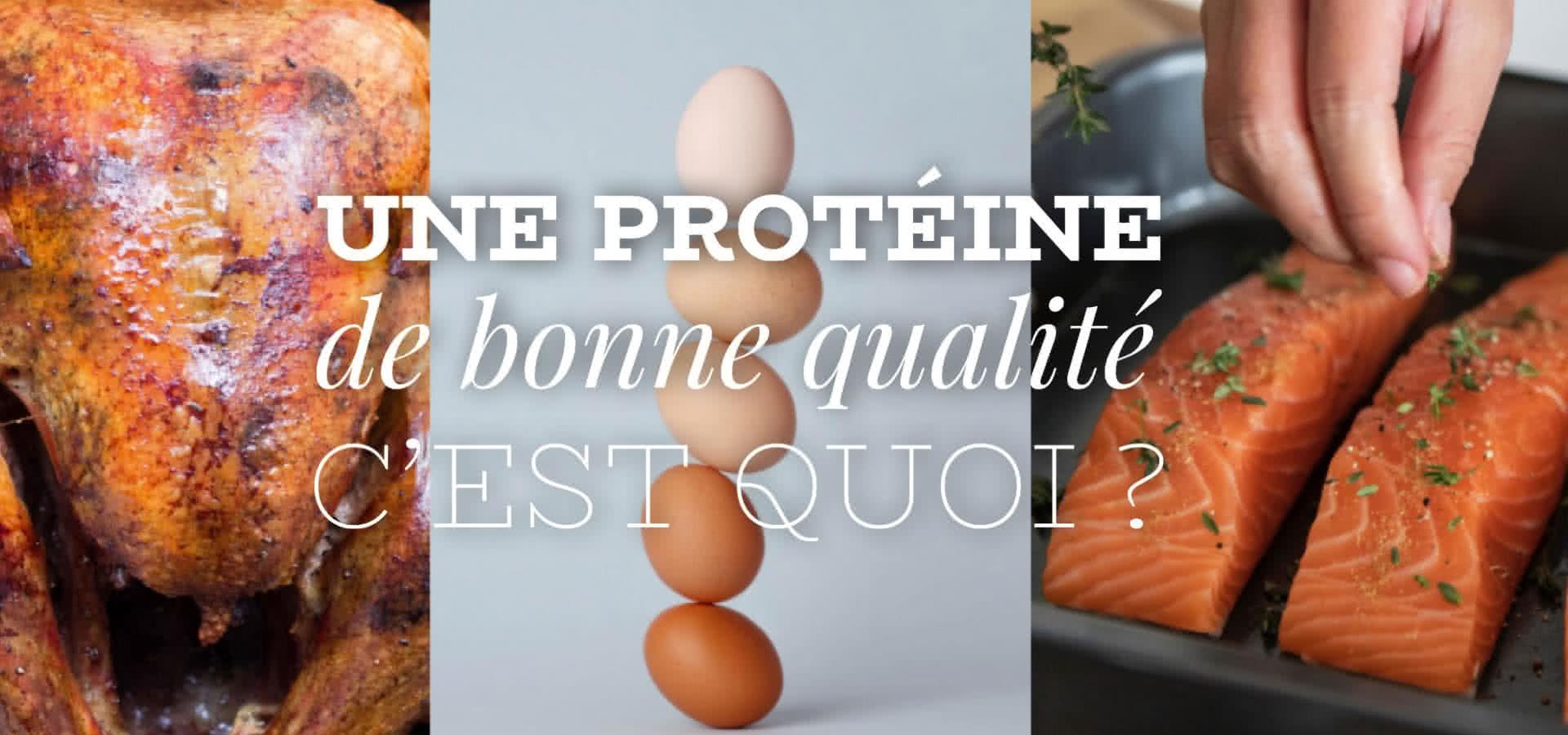 Qu'est-ce qu'une protéine de bonne qualité ?