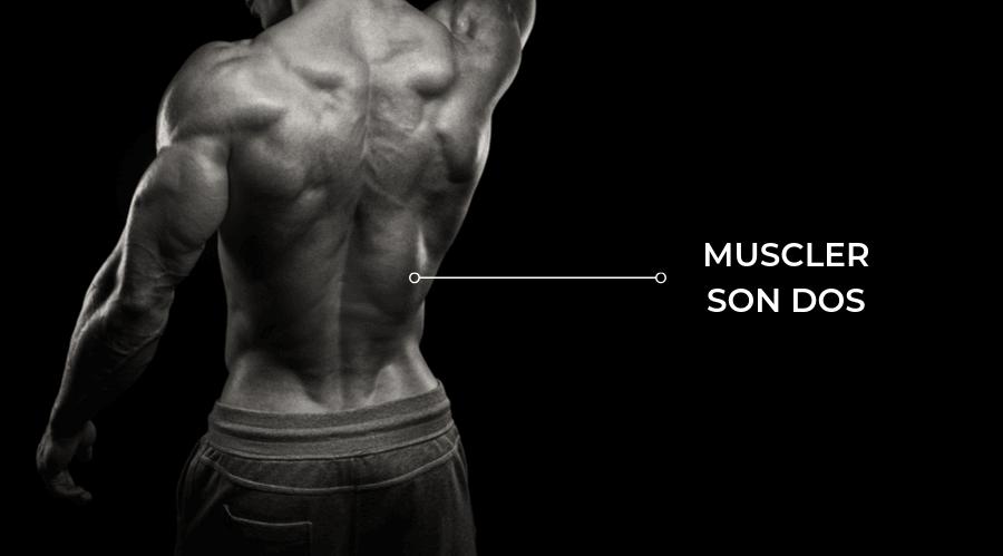 Exercices pour muscler et développer son dos